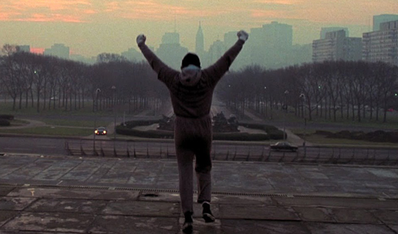 Rocky-runs-up-the-stairs-